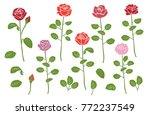 collection from  flowers and... | Shutterstock .eps vector #772237549
