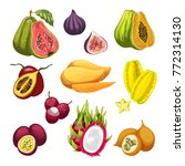 exotic and tropical fruit... | Shutterstock .eps vector #772314130