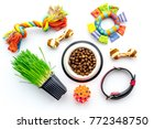 Stock photo toys for cat near dry food and grass in pot on white background top view 772348750