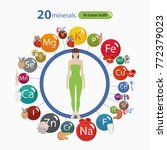20 minerals  microelements and... | Shutterstock .eps vector #772379023