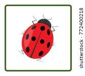 Ladybird Red Icon. Illustratio...