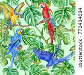 parrots  macaws and monstera... | Shutterstock . vector #772434034