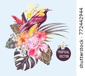 tropical flowers  bird of... | Shutterstock .eps vector #772442944