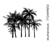 vector of palm tree silhouette... | Shutterstock .eps vector #772449853