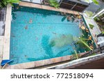 Swimming Pool Cleaning  Dirt I...