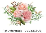 watercolor drawing of a branch... | Shutterstock . vector #772531903