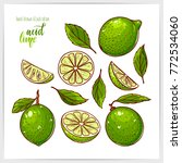 colorful set of ripe and tasty... | Shutterstock .eps vector #772534060