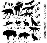 wild animals and birds... | Shutterstock .eps vector #772570930
