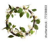 leaves wreath isolated | Shutterstock . vector #77258803