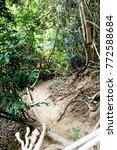 Trekking Route Way In Forest