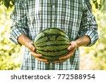 organic vegetables and fruit.... | Shutterstock . vector #772588954