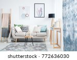 blue curtain  posters and... | Shutterstock . vector #772636030