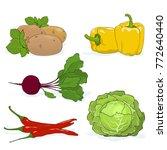 fresh gardening vegetables... | Shutterstock .eps vector #772640440
