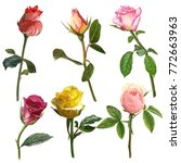 illustration of beautiful...   Shutterstock . vector #772663963