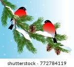 vector illustration. bullfinch... | Shutterstock .eps vector #772784119