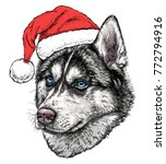 christmas card with husky... | Shutterstock .eps vector #772794916