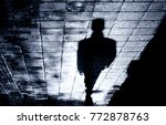 blurry shadow and silhouette of ... | Shutterstock . vector #772878763