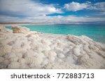 Dead Sea Salt Shore. Ein Bokek  ...