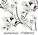 vector black decorative... | Shutterstock .eps vector #772889419