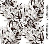 vector black decorative... | Shutterstock .eps vector #772889803