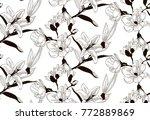 vector black decorative... | Shutterstock .eps vector #772889869