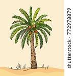 desert. date fruit palm on sand ... | Shutterstock .eps vector #772978879