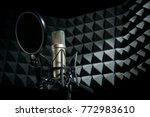 Modern Professional Microphone...