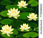 lotus. water lily. lily.... | Shutterstock .eps vector #773008060