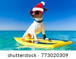 santa claus dog surfing on a... | Shutterstock . vector #773020309