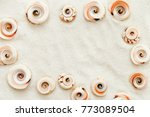 the frame is lined with sea... | Shutterstock . vector #773089504