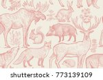 forest animals and plants... | Shutterstock .eps vector #773139109