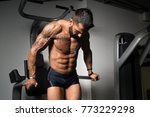young muscular fitness... | Shutterstock . vector #773229298