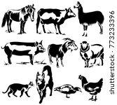 vector flat illustration of...   Shutterstock .eps vector #773233396
