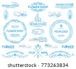 vector set of hand drawn... | Shutterstock .eps vector #773263834