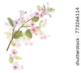 spring blossom  bloom  ...   Shutterstock .eps vector #773266114