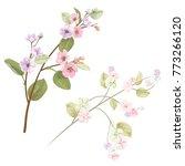 spring blossom  bloom  ... | Shutterstock .eps vector #773266120