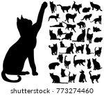 vector isolated silhouette cat... | Shutterstock .eps vector #773274460
