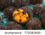 Uni Urchin Sashimi Fresh...