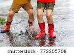 two children wearing red rain...   Shutterstock . vector #773305708