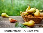 basket with fresh pears with... | Shutterstock . vector #773325598