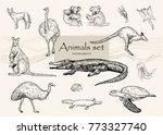 vector hand drawn monochrome...   Shutterstock .eps vector #773327740