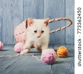 Stock photo white kitten with wool ball and straw basket play at blue wood background small funny cat 773362450