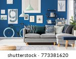 navy blue living room with... | Shutterstock . vector #773381620