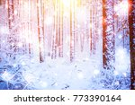 tree pine spruce in magic... | Shutterstock . vector #773390164