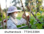 farmer using mobile phone... | Shutterstock . vector #773413384