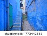 blue houses in jodhpur. | Shutterstock . vector #773442556