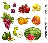fruit isolated sketch set of...   Shutterstock .eps vector #773445028