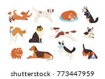 collection of funny dogs of... | Shutterstock .eps vector #773447959