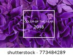 trendy color concept of the... | Shutterstock . vector #773484289