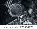 close up of indian iliac's... | Shutterstock . vector #773538976
